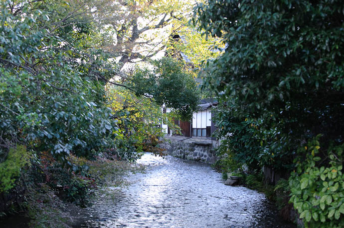 Looking Downstream -- Kyoto, Japan -- Copyright 2009 Jeffrey Friedl, http://regex.info/blog/