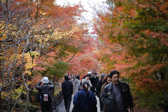 Generic Path prior to the rain -- Eikando Temple -- Kyoto, Japan -- Copyright 2009 Jeffrey Friedl, http://regex.info/blog/