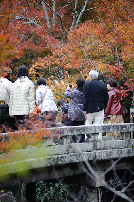 Vantage -- Eikando Temple -- Kyoto, Japan -- Copyright 2009 Jeffrey Friedl, http://regex.info/blog/