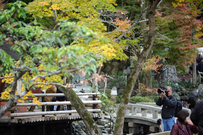 Paul Barr the guy with the big Nikon D3 + Nikkor 70 -200mm f/2.8 VR -- Eikando Temple -- Kyoto, Japan -- Copyright 2009 Jeffrey Friedl, http://regex.info/blog/