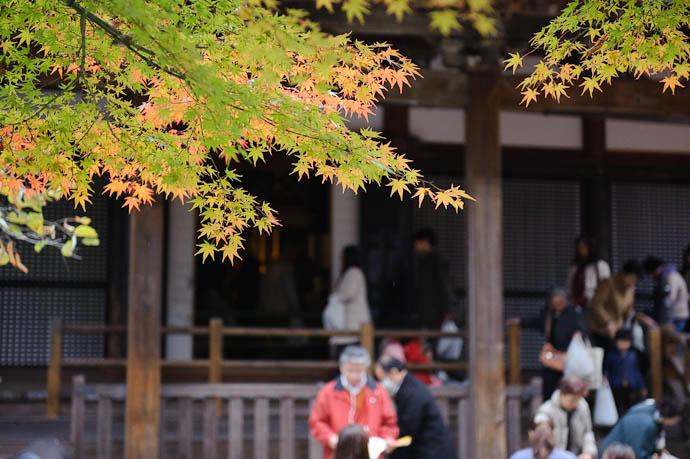 Checking the Map -- Eikando Temple -- Kyoto, Japan -- Copyright 2009 Jeffrey Friedl, http://regex.info/blog/