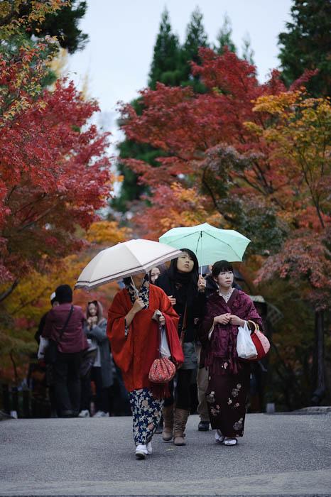 Class Simple. Unpretentious. Classic. -- Eikando Temple -- Kyoto, Japan -- Copyright 2009 Jeffrey Friedl, http://regex.info/blog/
