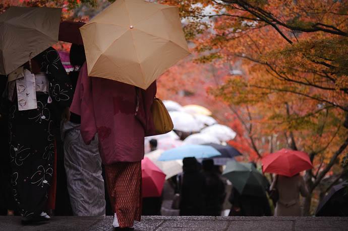 Descent -- Eikando Temple -- Kyoto, Japan -- Copyright 2009 Jeffrey Friedl, http://regex.info/blog/