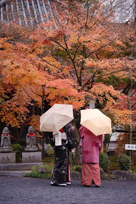 Mini Conference -- Eikando Temple -- Kyoto, Japan -- Copyright 2009 Jeffrey Friedl, http://regex.info/blog/
