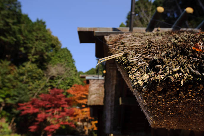 Rough Thatch -- Himukai Shrine -- Kyoto, Japan -- Copyright 2009 Jeffrey Friedl, http://regex.info/blog/