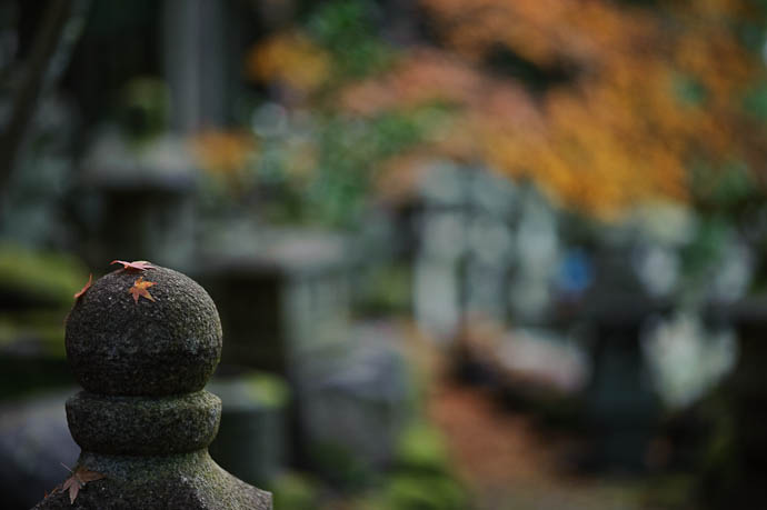 Maybe Standing Alone? -- Nishimura Stone Lantern workworkshopshop and garden -- Kyoto, Japan -- Copyright 2009 Jeffrey Friedl, http://regex.info/blog/