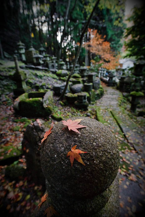 Three Leaves Behind Nishimura Stone Lanterns , Kyoto Japan -- Nishimura Stone Lantern workworkshopshop and garden -- Copyright 2009 Jeffrey Friedl, http://regex.info/blog/