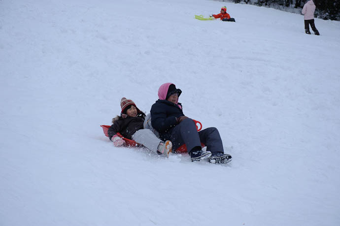 Multi-Generational Sledding -- Makino Ski Area -- Takashima, Shiga, Japan -- Copyright 2010 Jeffrey Friedl, http://regex.info/blog/