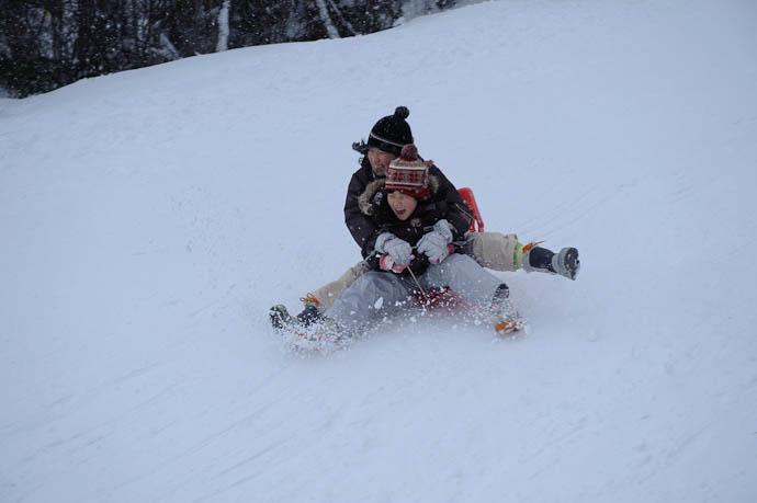 Pair -- Makino Ski Area -- Takashima, Shiga, Japan -- Copyright 2010 Jeffrey Friedl, http://regex.info/blog/