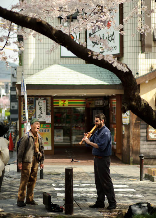 Impromptu Duet under the blossoms, in front of a 7-11 convenience store -- Kyoto, Japan -- Copyright 2010 Jeffrey Friedl, http://regex.info/blog/