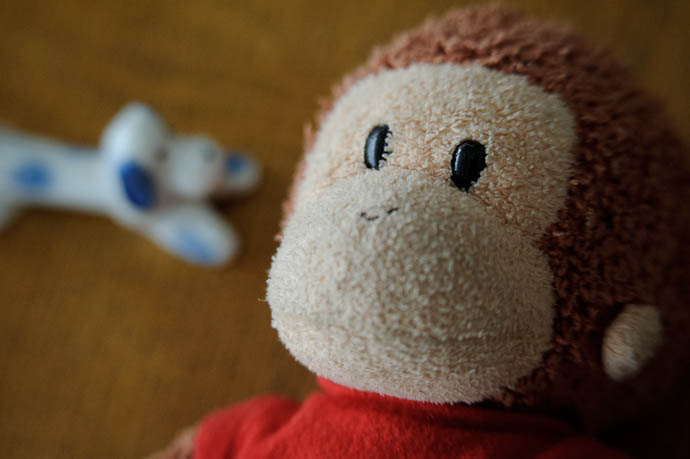Curious George close up -- Kyoto, Japan -- Copyright 2010 Jeffrey Friedl, http://regex.info/blog/