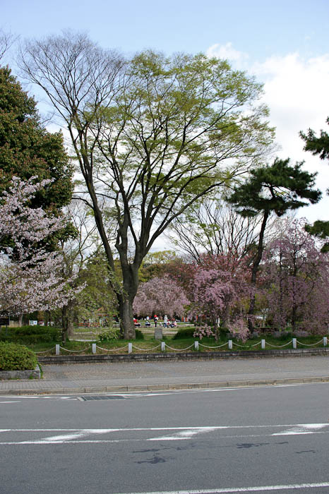 "Daycare @ 50mm Goldilocks says ""Too wide!"" -- Kyoto, Japan -- Copyright 2010 Jeffrey Friedl, http://regex.info/blog/"