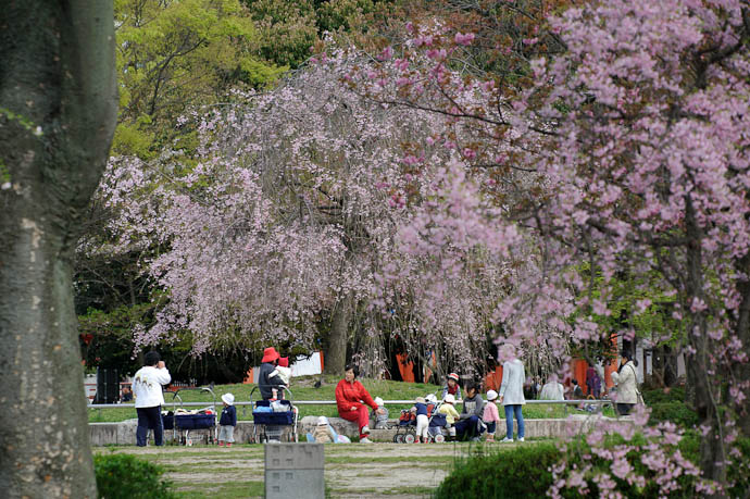 "Daycare @ 240mm Goldilocks says ""Just right!"" -- Kyoto, Japan -- Copyright 2010 Jeffrey Friedl, http://regex.info/blog/"