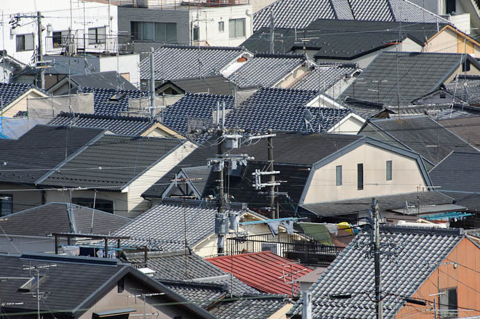 Top of Kyoto's Suburban Canopy -- Kyoto, Japan -- Copyright 2010 Jeffrey Friedl, http://regex.info/blog/