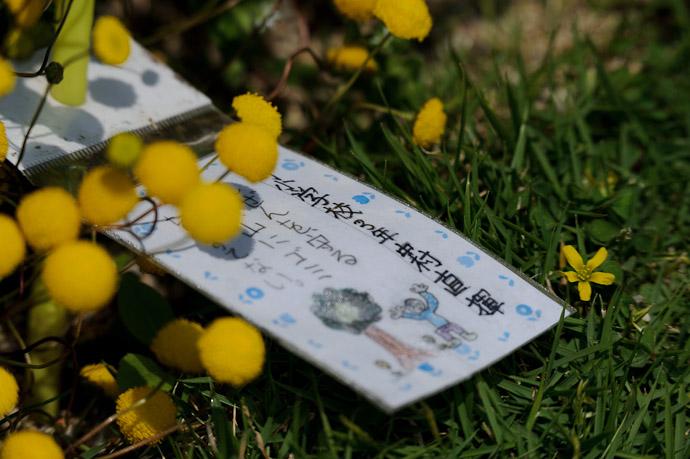 Wish -- Awaji, Hyogo, Japan -- Copyright 2010 Jeffrey Friedl, http://regex.info/blog/