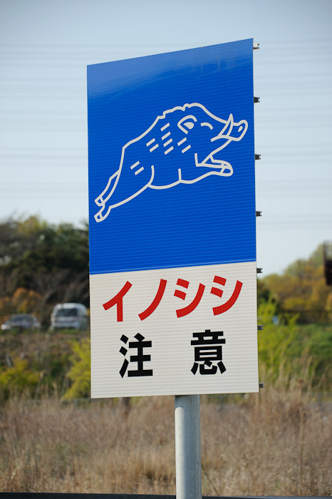 """Beware of Wild Boar"" -- Kobe, Hyogo, Japan -- Copyright 2010 Jeffrey Friedl, http://regex.info/blog/"