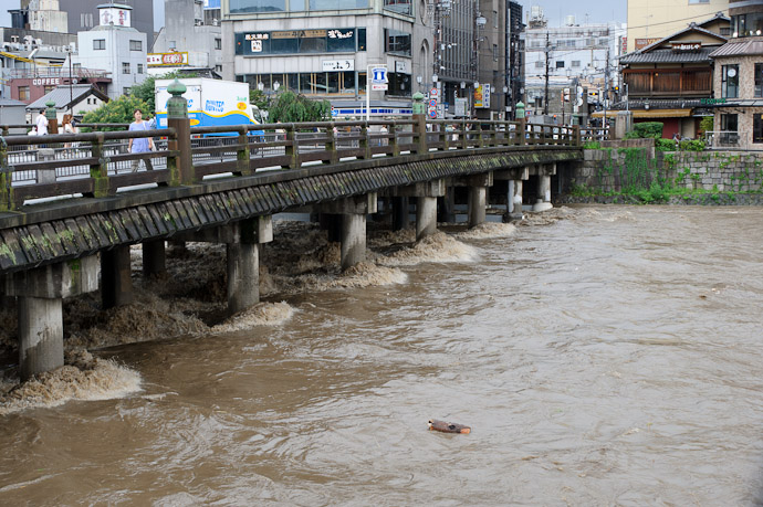 Last Year -- Kamo River -- Kyoto, Japan -- Copyright 2010 Jeffrey Friedl, http://regex.info/blog/