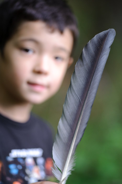 Goose Feather -- Rootstown, OH, USA -- Copyright 2010 Jeffrey Friedl, http://regex.info/blog/