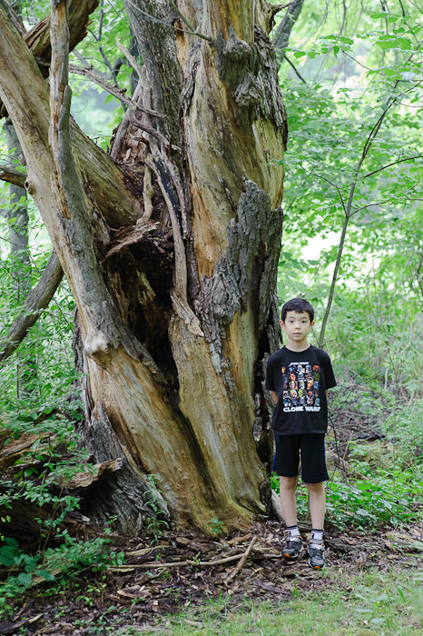 Anthony by an Old Tree a few days ago -- Rootstown, OH, USA -- Copyright 2010 Jeffrey Friedl, http://regex.info/blog/