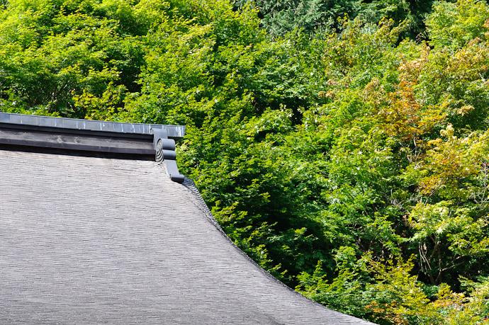 Temple Roof -- Jakkouin Temple -- Kyoto Sakyo Ward, Kyoto Prefecture, Japan -- Copyright 2010 Jeffrey Friedl, http://regex.info/blog/