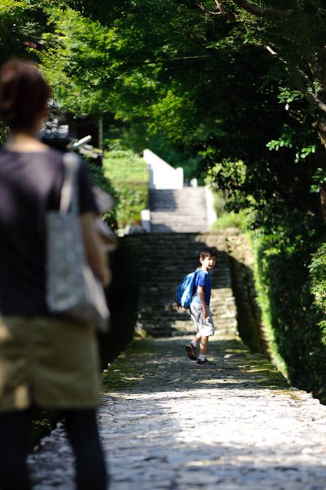"Youthful Impatience or if I'm being honest, ""Youthful Energy"" -- Jakkouin Temple -- Kyoto Sakyo Ward, Kyoto Prefecture, Japan -- Copyright 2010 Jeffrey Friedl, http://regex.info/blog/"