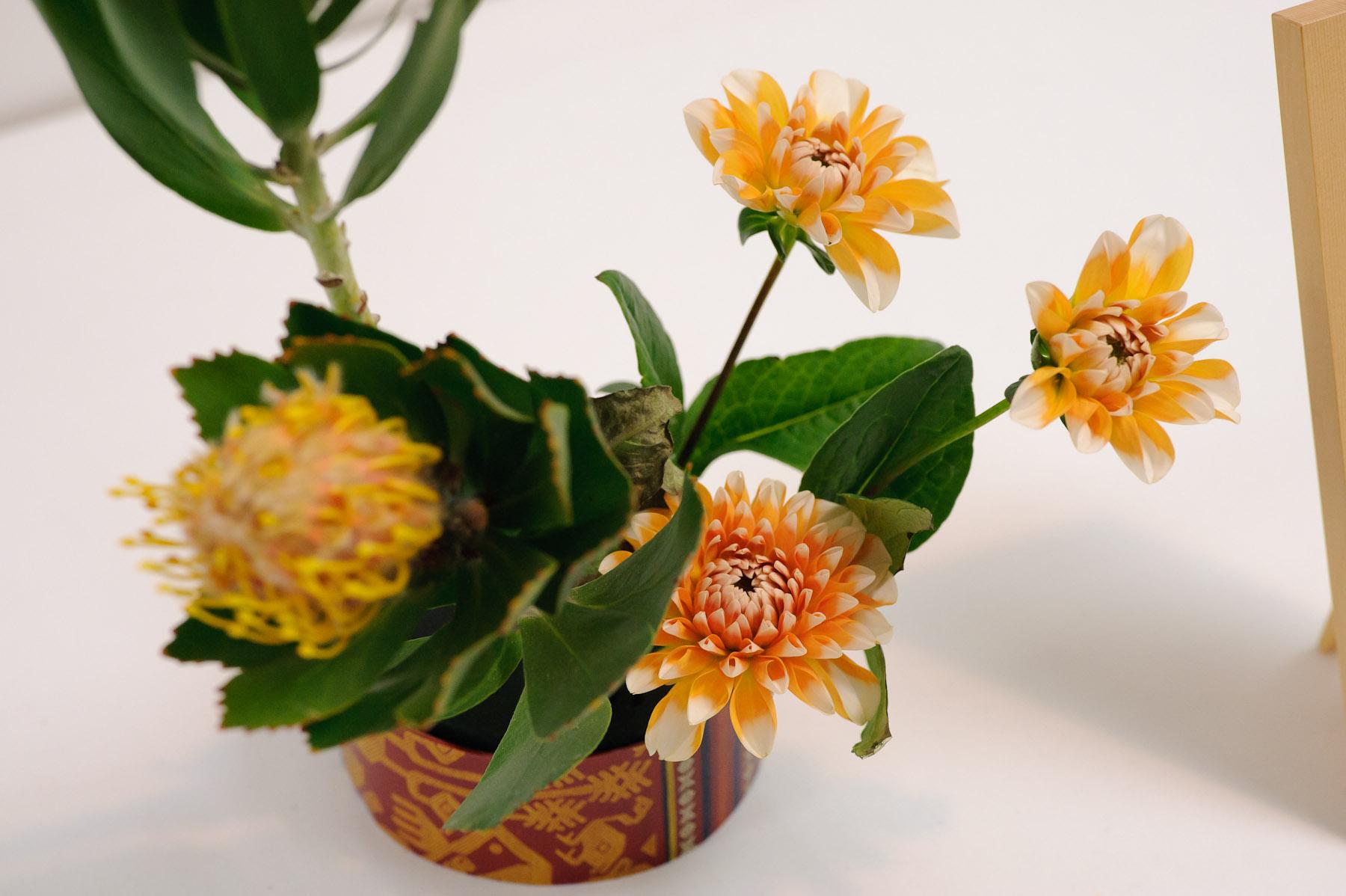 Jeffrey Friedls Blog Kids Flower Arranging Exhibition Revisited