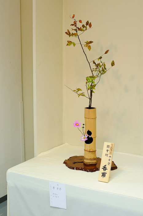 Documentation Shot in the corner, at the end of the table -- Ikebana Show -- Kyoto, Japan -- Copyright 2010 Jeffrey Friedl, http://regex.info/blog/