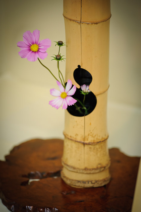 Soft and Subtle -- Ikebana Show -- Kyoto, Japan -- Copyright 2010 Jeffrey Friedl, http://regex.info/blog/