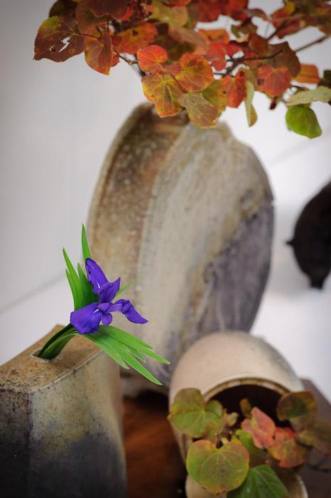 desktop background image of a Japanese flower arrangement -- Ikebana Show -- Kyoto, Japan -- Copyright 2010 Jeffrey Friedl, http://regex.info/blog/