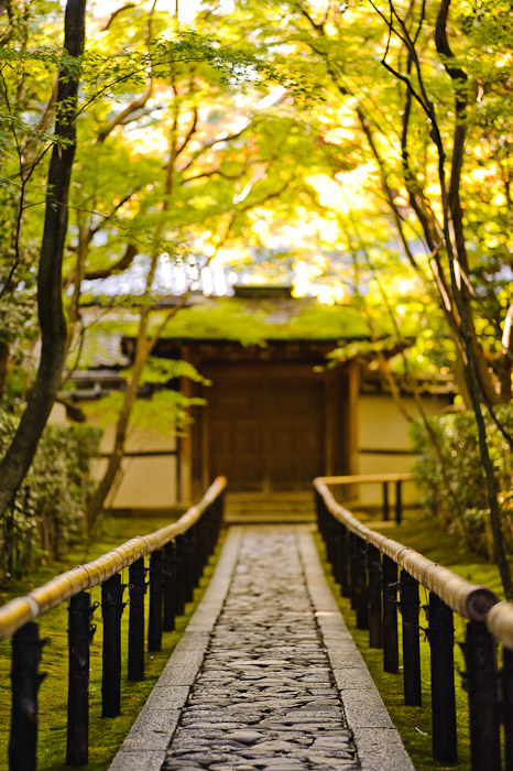 Koutou-in Temple (高桐院) -- Kyoto, Japan -- Copyright 2010 Jeffrey Friedl, http://regex.info/blog/