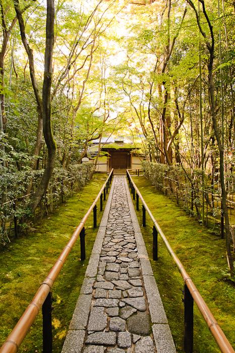 Koutou-in Temple (高桐院) -- Kyoto, Japan -- Copyright 2010 Jeffrey Friedl, http://regex.info/blog/