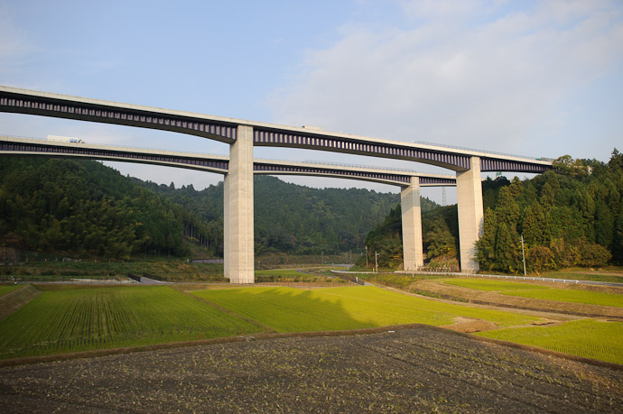 Bridges Growing From the Rice Fields ( looking north ) -- Koka, Shiga, Japan -- Copyright 2010 Jeffrey Friedl, http://regex.info/blog/