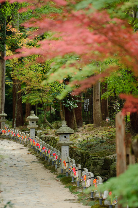 Kongourinji Temple (金剛輪寺) -- Aisho, Shiga, Japan -- Copyright 2010 Jeffrey Friedl, http://regex.info/blog/