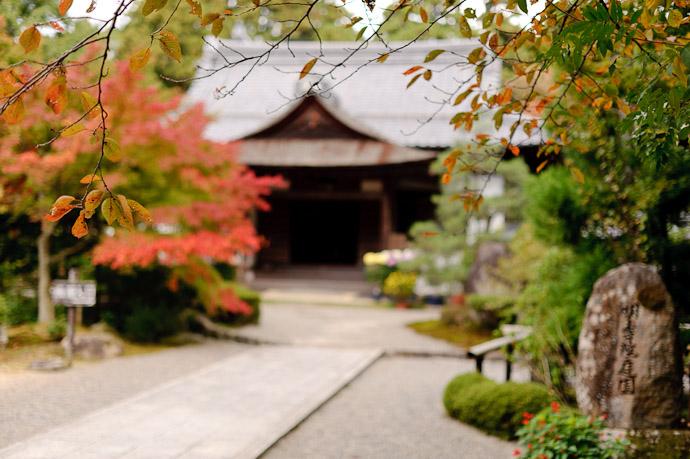 Backdrop For Cherry-Leaf Colors -- Kongourinji Temple (金剛輪寺) -- Aisho, Shiga, Japan -- Copyright 2010 Jeffrey Friedl, http://regex.info/blog/