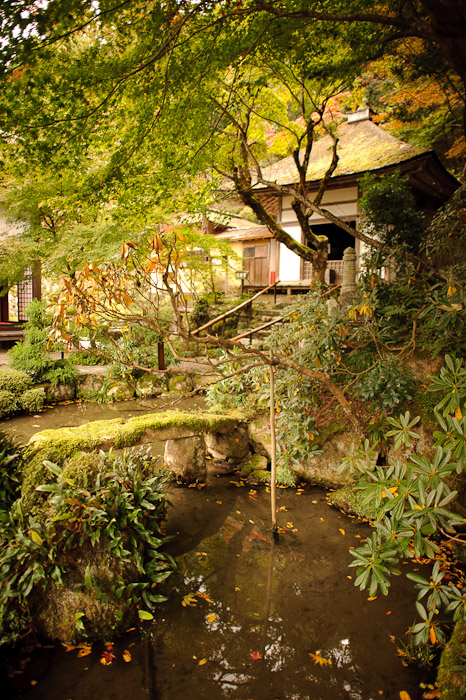 Stream with Moss-Covered Footbridge -- Kongourinji Temple (金剛輪寺) -- Aisho, Shiga, Japan -- Copyright 2010 Jeffrey Friedl, http://regex.info/blog/