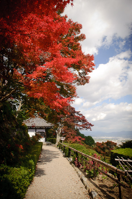 Minor Side Path -- Yoshiminedera Temple (善峯寺) -- Kyoto, Japan -- Copyright 2010 Jeffrey Friedl, http://regex.info/blog/