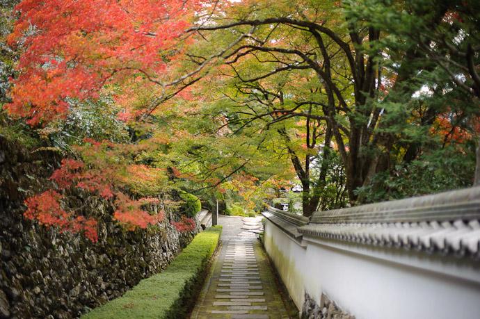 Path Back Down -- Yoshiminedera Temple (善峯寺) -- Kyoto, Japan -- Copyright 2010 Jeffrey Friedl, http://regex.info/blog/