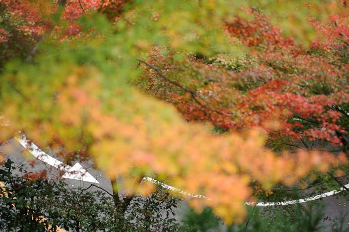 Curve -- Yoshiminedera Temple (善峯寺) -- Kyoto, Japan -- Copyright 2010 Jeffrey Friedl, http://regex.info/blog/
