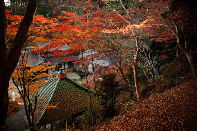 Today's Autumn-Festooned Temple Sokushouji Temple (息障寺) in-the-middle-of-nowhere, Japan -- Sokushouji Temple (息障寺) -- Koka, Shiga, Japan -- Copyright 2010 Jeffrey Friedl, http://regex.info/blog/