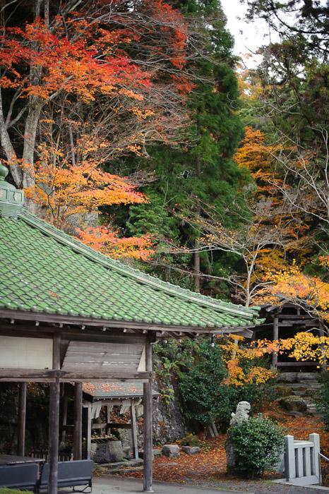 More Awaits much more -- Sokushouji Temple (息障寺) -- Koka, Shiga, Japan -- Copyright 2010 Jeffrey Friedl, http://regex.info/blog/