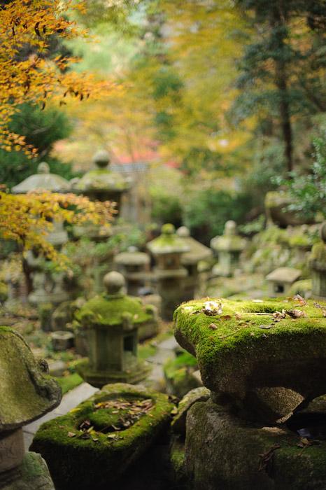 Creamy -- Nishimura Stonecarver's Garden -- Kyoto, Japan -- Copyright 2010 Jeffrey Friedl, http://regex.info/blog/