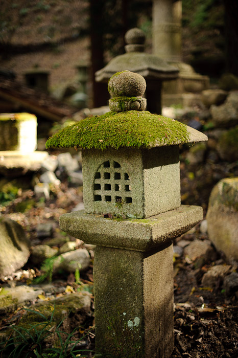 Moss: Wide View -- Nishimura Stonecarver's Garden -- Kyoto, Japan -- Copyright 2010 Jeffrey Friedl, http://regex.info/blog/