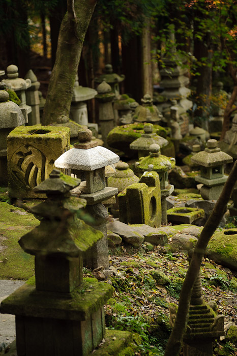 Somebody Has a New Hat -- Nishimura Stonecarver's Garden -- Kyoto, Japan -- Copyright 2010 Jeffrey Friedl, http://regex.info/blog/