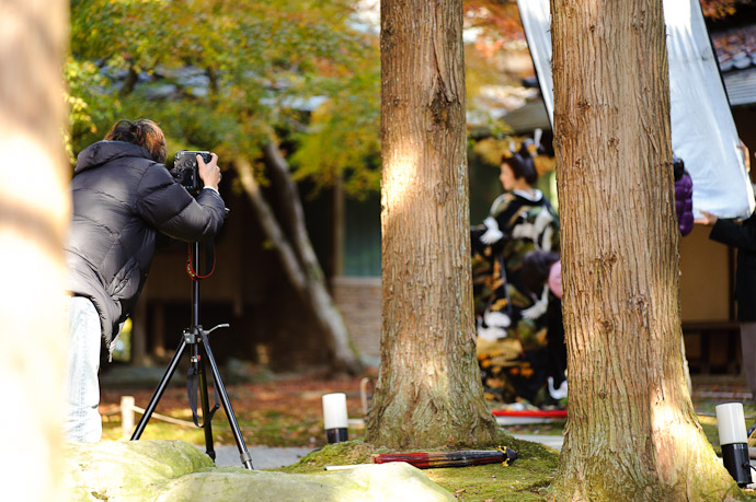 Photo Shoot -- Shouzan Gardens (しょうざん) -- Kyoto, Japan -- Copyright 2010 Jeffrey Friedl, http://regex.info/blog/