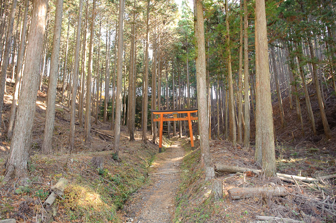 Not Much To See From the Road -- Himuro Shrine (氷室神社) -- Kyoto, Japan -- Copyright 2010 Jeffrey Friedl, http://regex.info/blog/