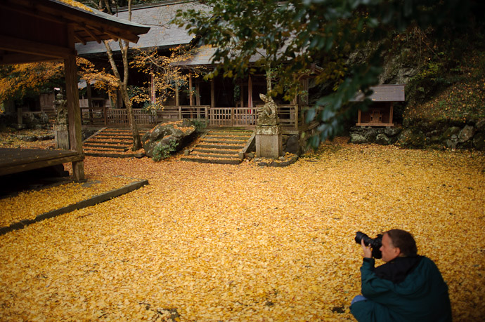 Full Coverage -- Iwato Ochiba Shrine (岩戸落葉神社) -- Kyoto, Japan -- Copyright 2010 Jeffrey Friedl, http://regex.info/blog/