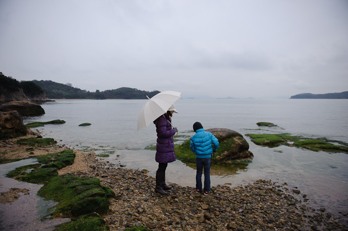 Lots of Stuff in the Intertidal Zone -- Shodoshima, Kagawa, Japan -- Copyright 2010 Jeffrey Friedl, http://regex.info/blog/