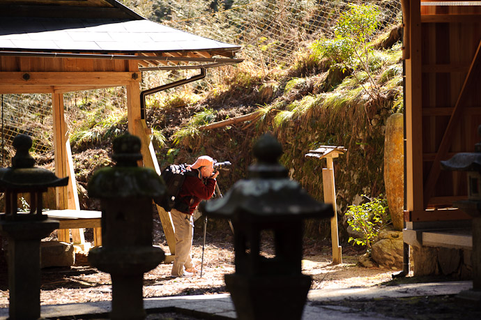 Toufuu Shrine (道風神社) -- Kyoto, Japan -- Copyright 2011 Jeffrey Friedl, http://regex.info/blog/