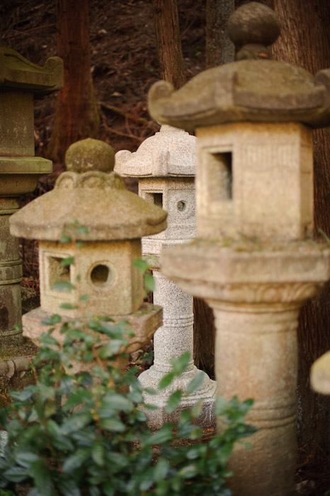 Shy -- Toufuu Shrine (道風神社) -- Kyoto, Japan -- Copyright 2011 Jeffrey Friedl, http://regex.info/blog/