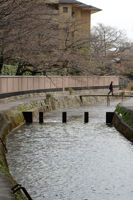Status as of March 25 cherry blossoms not out yet in Kyoto, but certainly on the verge of eruption -- Kyoto, Japan -- Copyright 2011 Jeffrey Friedl, http://regex.info/blog/